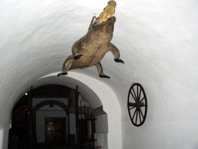Brnenski drak